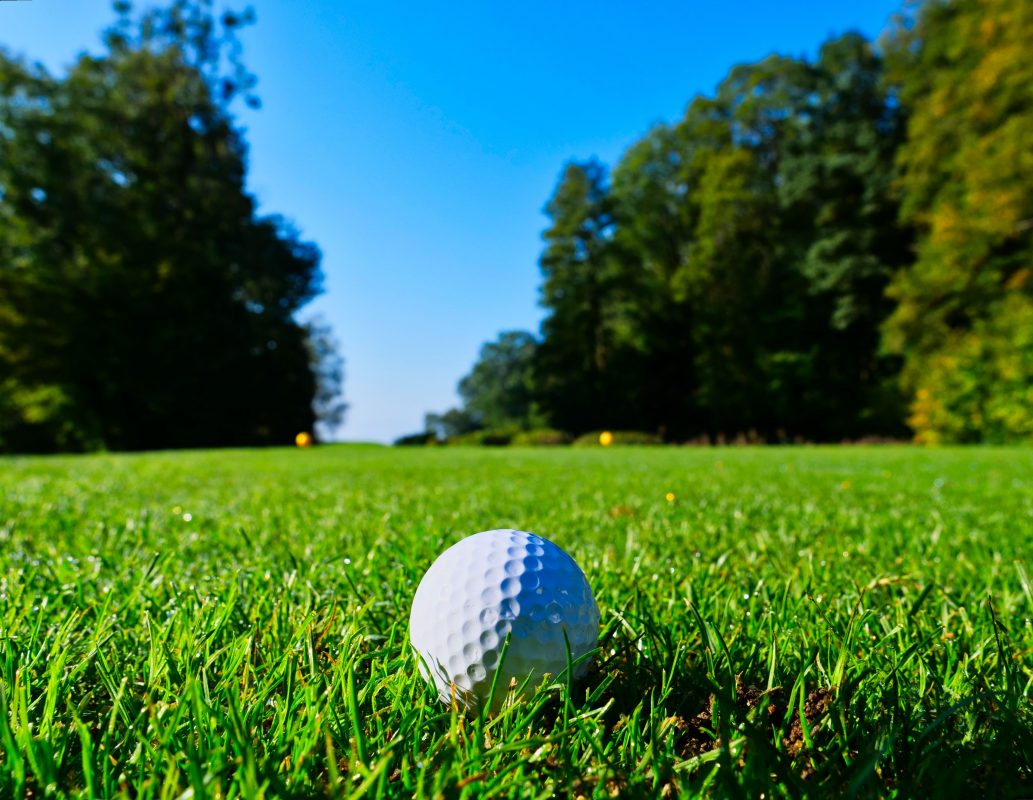 Golf Tournament Friday, May 31